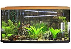 Kulsyre til akvarie